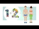 Как привести тело в форму