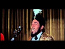 Sam The Sham and the Pharaohs - Monkey See Monkey Do - 1965