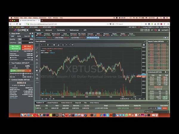 Биржа BiTMEX - подробный обзор, торговля с плечом (leverage, 100x)