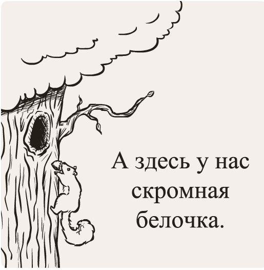 https://pp.vk.me/c543100/v543100411/7a70/TH99Ur6BRaM.jpg