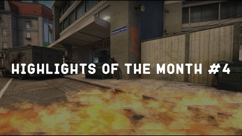 🐾Highlights of the month 4🐾