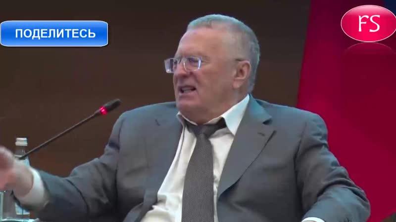 Жириновский чиновники правящей партии будут продолжать хамить своим избирателям