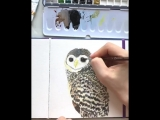 This baby owl is begging the Saturday and Sunday