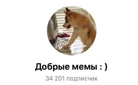 Наш телеграм канал - https://teleg.run/dobriememes