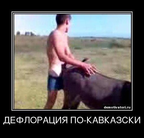 azer-ebet-osla