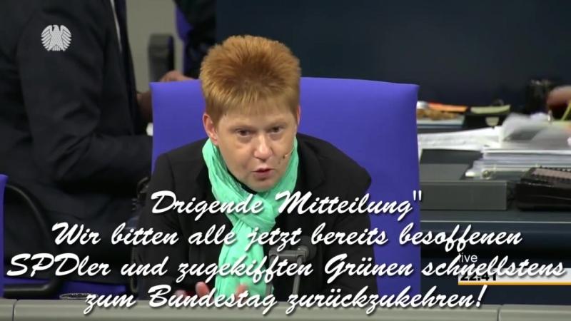 Nicht beschlussfähig AfD jagt Bundestag 18 01 2018 смотреть онлайн без регистрации