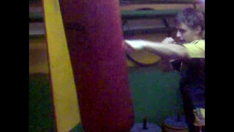 Ара боксирует