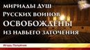 Освобождены из заточения Души русских воинов. Игорь Полуйчик. Часть 2