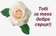 роза,розы,цветы,подруге,другу,настроение,хорошего настроения,тебе,для тебя,пожелание,мило,красиво,любовь,любов,люблю,я тебя люблю,троянда,троянди,квіти,