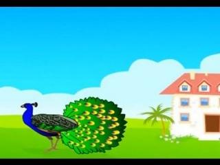 Peacock Bird - Nursery Rhymes in Hindi | Animated Songs Playlist for Children with Lyrics