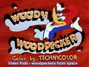 Woodpeckers from space HQ - Video Kids