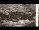 Выставка Пиранези. До и после. Италия - Россия. XVIII-XXI в ГМИИ им. А.С.Пушкина