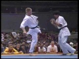 Kyokushin Karate KO (back spin & other kick)