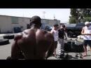 Shake the Earth w Fatality | Mike Rashid (shoulders)