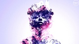 Nicolas Masseyeff - Muse (Original Mix)