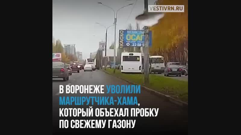 В Воронеже уволили маршрутчика, который объехал пробку по новому газону