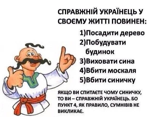 Если бы Путин забрал с нашей земли войска - это был бы лучший подарок для ветеранов, - первый вице-спикер Геращенко - Цензор.НЕТ 9446