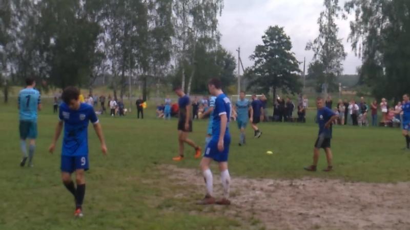 Гол Варданяна (Липень) в ворота Сокола (22.07.2018)