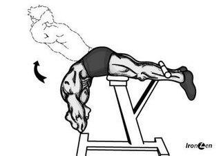 упражнения для позвоночника позвоночный столб окутан множеством различных мышц: полуостистой и длиннейшей мышцами головы, подвздошно-реберной, поперечно-остистой, полу-остистой и другими