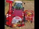 This machine harvests pumpkin seeds