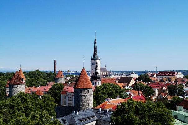 Таллин. Панорама