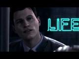 Connor - No type
