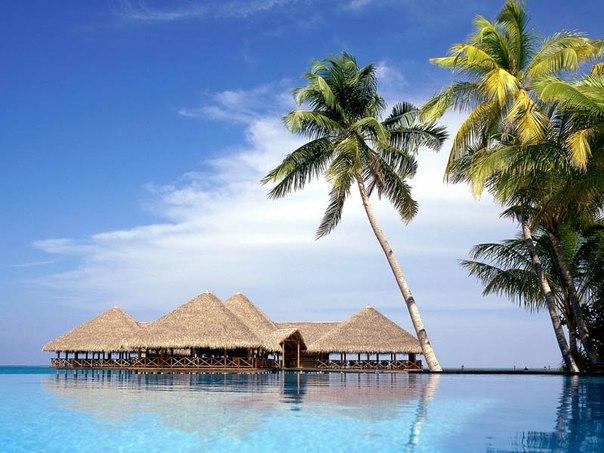 10 фактов о Мальдивских островах  1. Мальдивская Республика — государство, располагающееся в экваториальных...