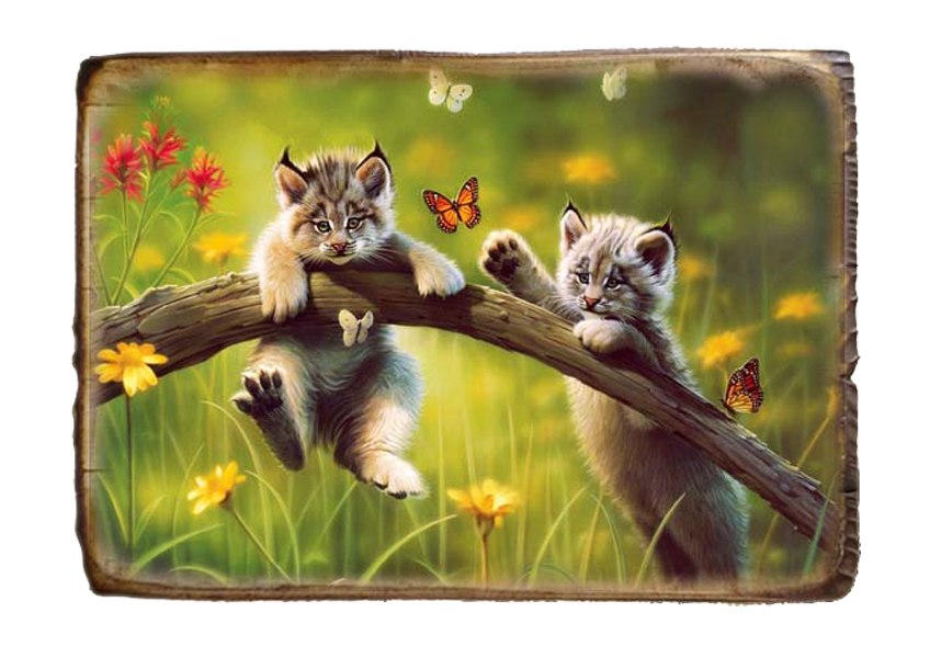 Картина декупаж на дереве с магическими программами  Is5AAw2YIeU