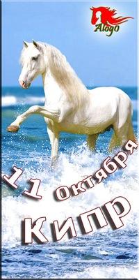 Семинар В Гармонии с Лошадью на Кипре