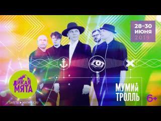 «Мумий Тролль» на фестивале «Дикая Мята 2019»