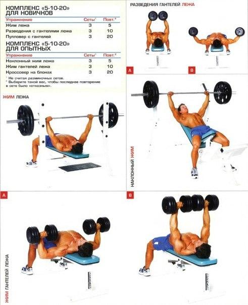 Упражнения для накачки грудных мышц в домашних