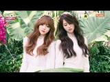 160427 Lovelyz (러블리즈) - Comeback Next Week @ 쇼챔피언 Show Champion
