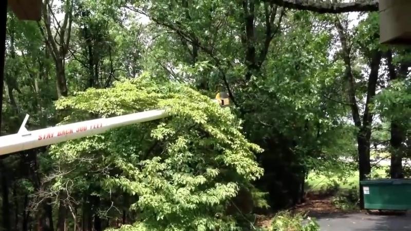 Новейшее оборудование по уходу, пересадке и обрезанию деревьев