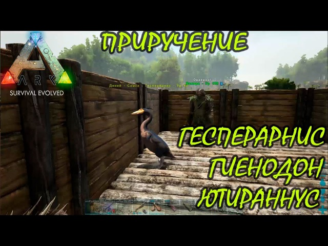 ARK Survival Evolved 15 Приручение Ютираннус Гесперорнис и Гиенодон