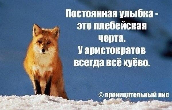 http://cs14102.vk.me/c320619/v320619644/58a3/mHkq-ZJnAgM.jpg