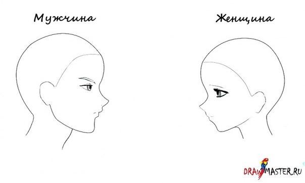 аниме картинки срисовать: