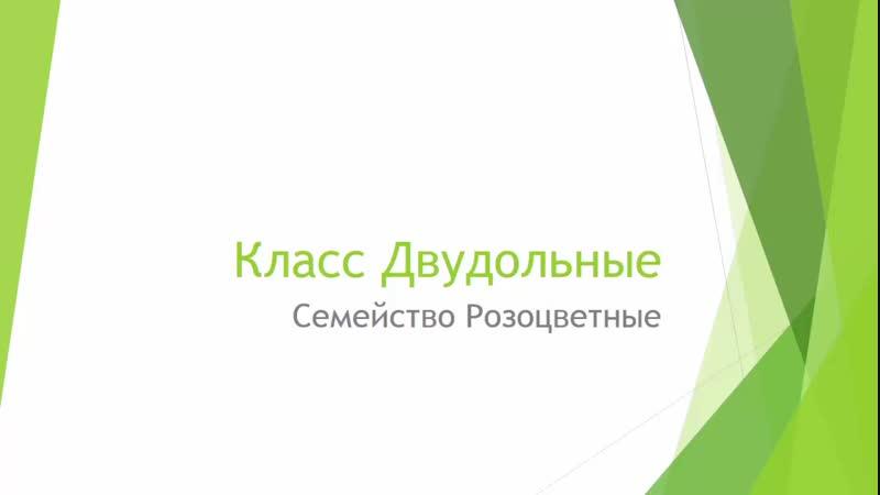 Биология. Семейство Розоцветные. Людмила Ивановна. Profi-Teacher.ru