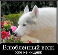 Алексей Кропотин, 28 апреля , Дубовка, id157009743