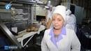 Работа Горловского хлебозавода №1 выпускаемая им продукция и ее разнообразие