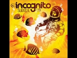 Incognito The Way You Love