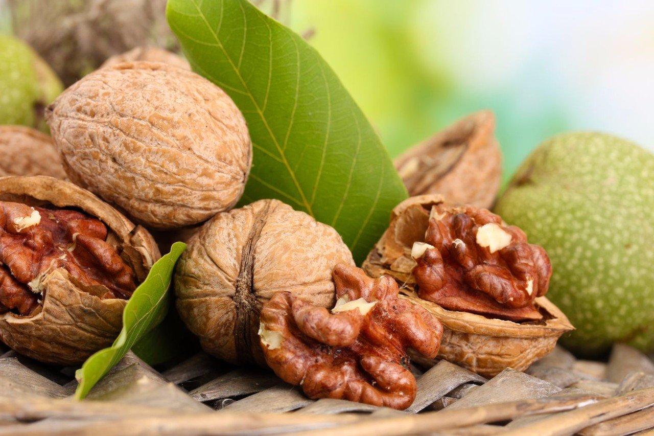 Использование грецкого ореха рецепты