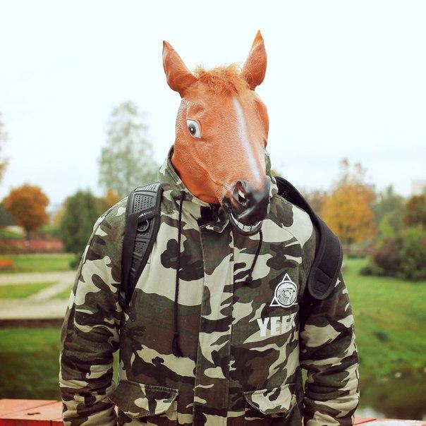 Лошадь звали? Столько позитивных эмоций я давно не получал, невероятная