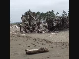 Пляж Ла Пуш