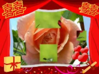 Ion Suruceanu-Cumparati flori