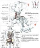 Качки,бодибилдинг,Тяжёлая Атлетик,тренинг, диеты,здоровье- красота!Cпортивное питание.