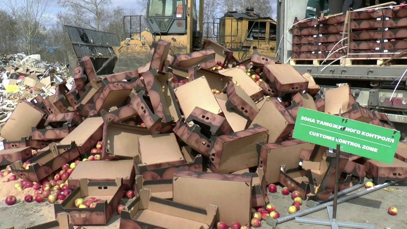 Томская таможня уничтожила 150 тонн яблок