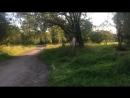 Прямое включение из Южно-Приморского парка в Красносельском районе.  Обсуждаем проблемы парка.