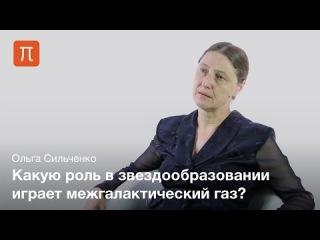 Роль окружения в эволюции галактик — Ольга Сильченко