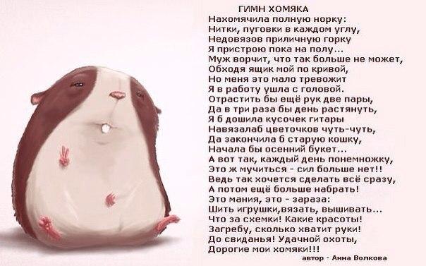 http://cs617319.vk.me/v617319543/24cd/OvElsdYBKyM.jpg