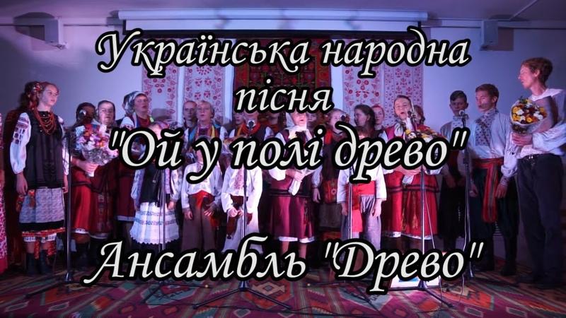 Ой у полі древо Українська народна пісня. Гурт Древо